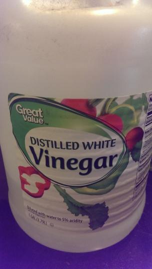 Frugal Living Diy Dishwasher Detergent On Planting