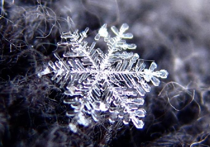 snowflake http://www.simplesciencestrategies.com