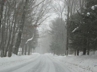 https://bugsandstuff.wordpress.com winter storm faith